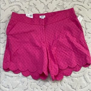 Pink crown and ivy shelby preppy scallop shorts